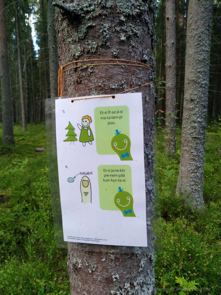 Luontopolku Tehtäviä Lapsille